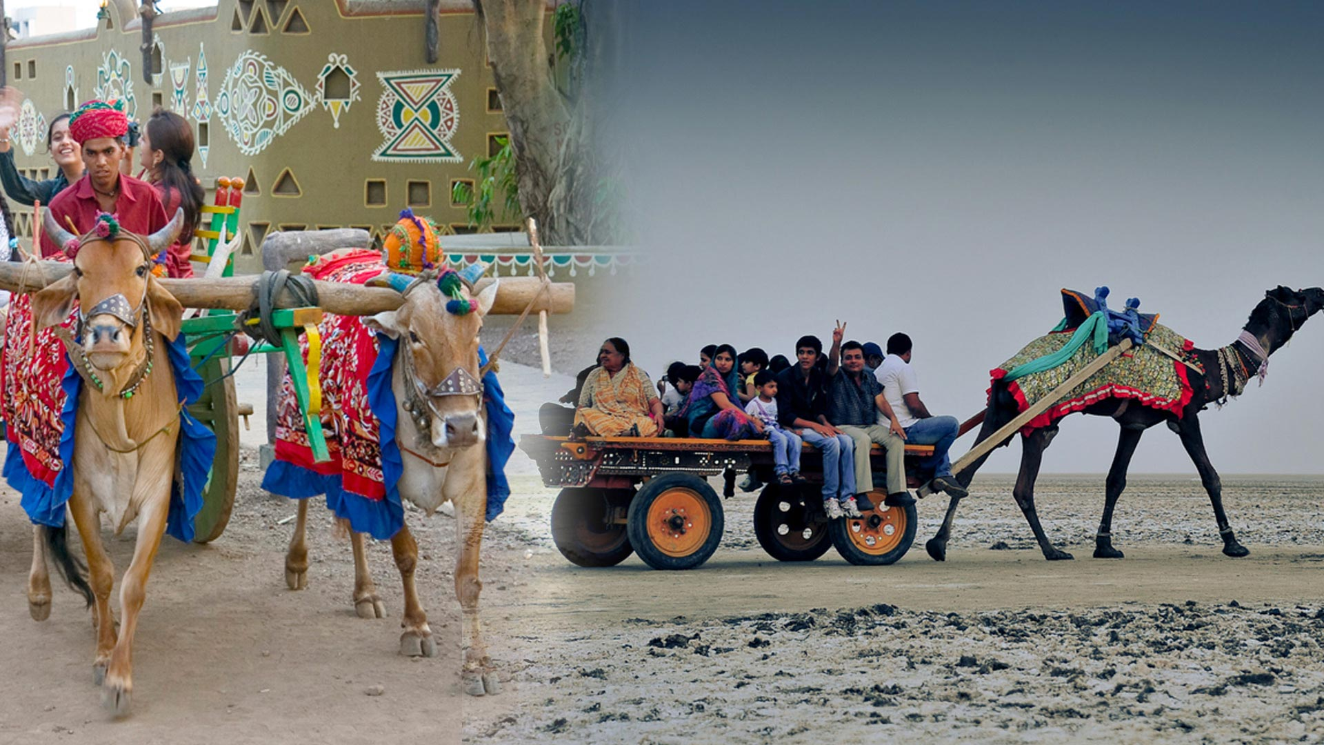 mode of transportation in rajasthan